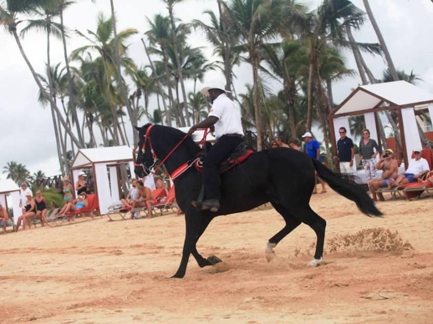 Why would you want to leave the beach for entertainment? At Breathless Punta Cana it comes to you!